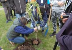 Konin. Dzień Ziemi w ZSCKU. Młodzież sadziła drzewa i krzewy
