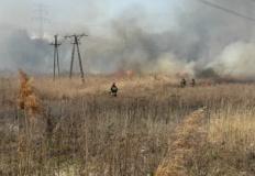 Na terenie miasta i powiatu odnotowano już 50 pożarów traw