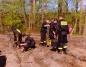 Dbają o las. Posadzili kilkaset sosen w Puszczy Bieniszewskiej