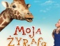 Moja żyrafa - wstęp wolny