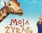Moja żyrafa - sala studyjna