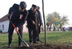 Kramsk. Wspólne śpiewali i posadzili drzewo dla Niepodległej
