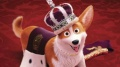 Corgi, psiak Królowej / dubbing