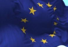 Jak głosowaliśmy? Zobaczcie wyniki wyborów do europarlamentu