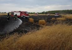 Pożar w Honoratce. W akcji wzięło udział kilka jednostek straży
