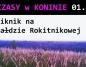 Piknik na hałdzie rokitnikowej na inaugurację Wczasów w Koninie