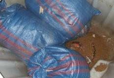 Policjanci zabezpieczyli 80 kilogramów nielegalnego tytoniu
