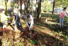 Uczniowie ze szkoły w Brzeźnie uporządkowali stary cmentarz