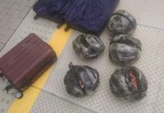 Perliczki na peronie? Niecodzienna przesyłka znaleziona w Koninie