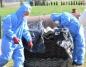 Powiat koniński zyskał dodatkowe pieniądze na usuwanie azbestu