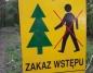 Helenów Pierwszy. Okresowy zakaz wstępu do lasu w Leśnictwie Licheń