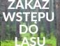 Zakaz wstępu do lasu. Wprowadzono czasowe ograniczenie