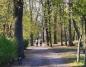 Konin. Park znowu otwarty. Mieszkańcy korzystają ze spacerów
