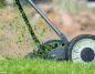 Miasto Konin wstrzymuje koszenie traw, aż do momentu opadów