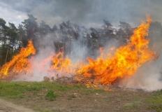 Pożar w Daninowie. Wójt gm ...