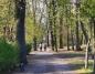 Miasto prowadzi opryski w Parku im. Chopina i na bulwarze