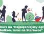 Dalej trwa konkurs na najładniejszy ogród na konińskiej starówce
