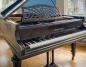 Koniński Bechstein. Absolwenci I LO chcą uratować fortepian