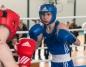 Mistrzostwa Polski Juniorów w Boksie. Konin bez medalu