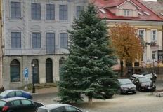 Świąteczna atmosfera w Koninie. Na rynku stanęła choinka