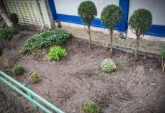 Konin.Przed schroniskiem powstaje ogródek.Rośliny mile widziane