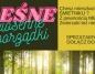 Majówkowe sprzątanie lasu. Społeczna akcja mieszkańców Konina
