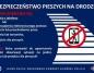 Zakaz korzystania z telefonu na pasach. Obowiązują nowe przepisy