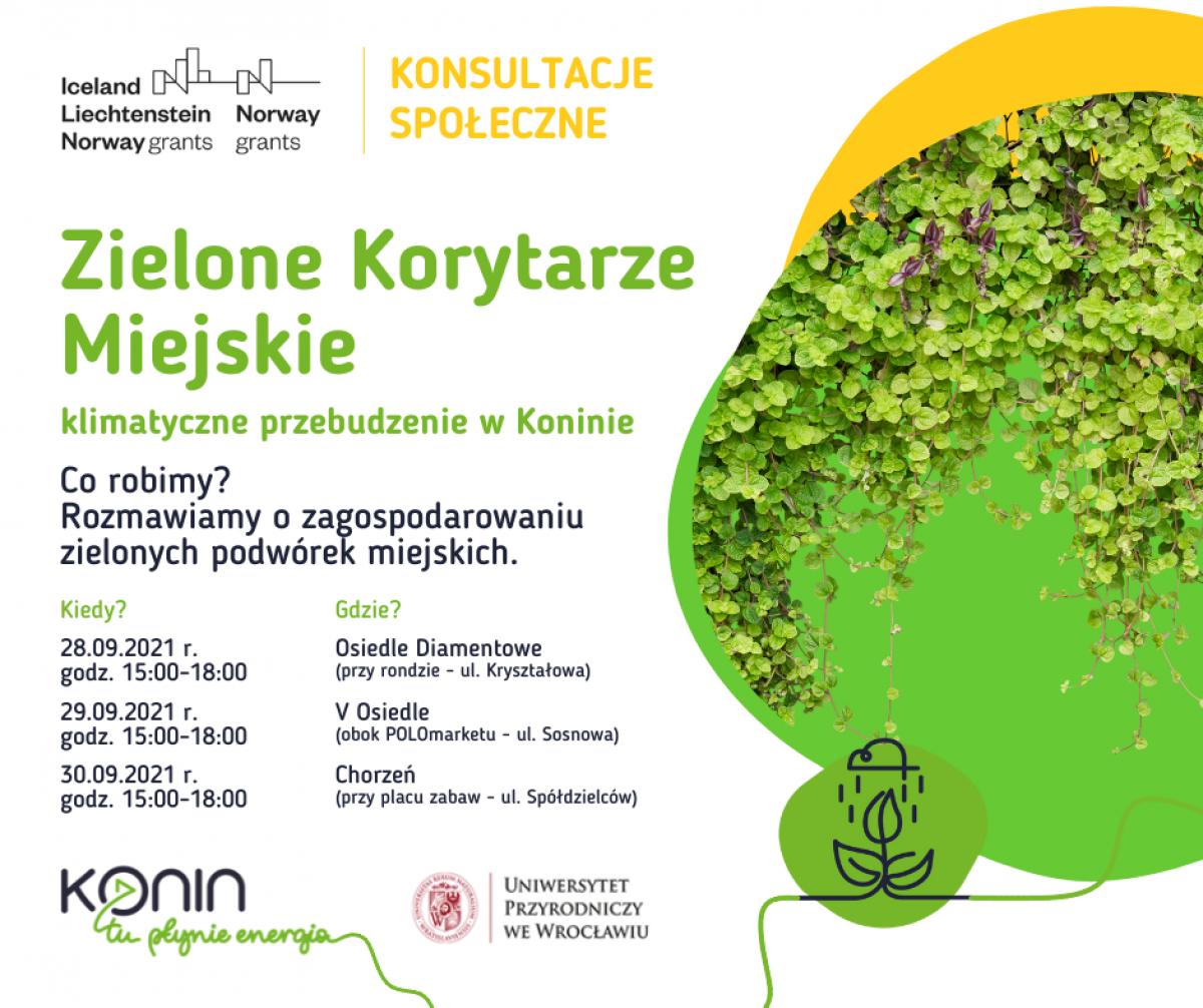 Konin. Trzydniowe konsultacje o zielonych podwórkach miejskich