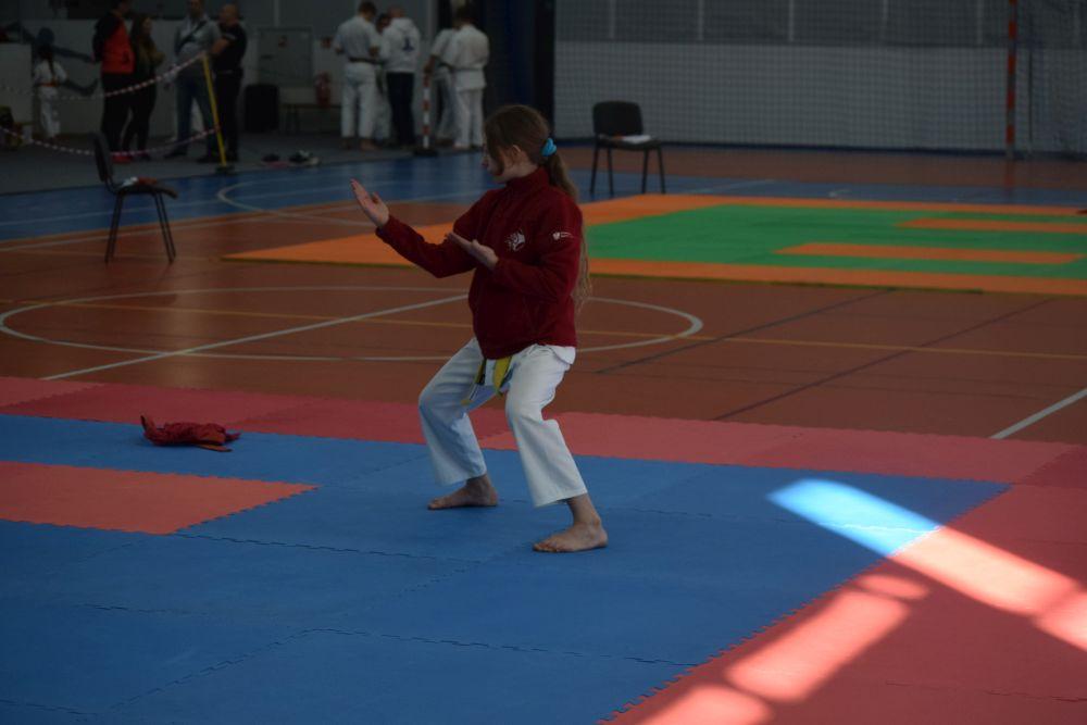 Karate ma się dobrze. Potwierdził to turniej w Golinie
