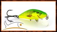 Wobler SALMO BULLHEAD 4S YELLOW DACE + GRATIS