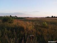 działki 5 km od Konina