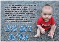 Przekaż 1% podatku Julkowi, chłopcu, który marzy by chodzić
