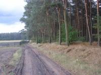 Piękna działka pod lasem w Brzeźnie - NA SPRZEDAŻ