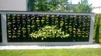 zakladanie  i   prace  w  ogrodzie