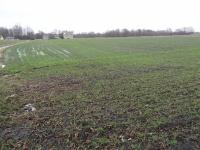 Grunt rolny 5,2330 ha, Nowy Krzymów