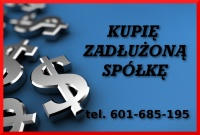Skup Spółek - Zadłużenie - Kontrole KAS/UKS - Skutecznie 299