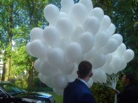 BALONY HELOWE KONIN hel do balonów pudło z balonami ledowe