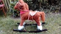 Sprzedam konia na biegunach