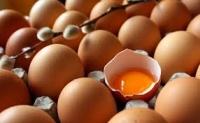 Naturalne swieze jaja wiejskie