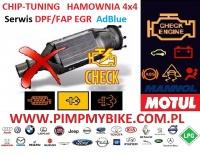 CHIP-TUNING HAMOWNIA DPF/FAP EGR AdBlue SCR Auto-elektronika
