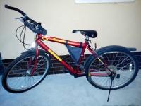 Rower firmy Kands