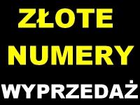 WYPRZEDAŻ - Virgin mobile złote numery złoty numer - Turek