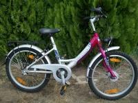 Rower dziecięcy Pegasus 20 alu dynamo w piaście