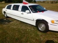Wynajem limuzyny lincol kolo konin turek!