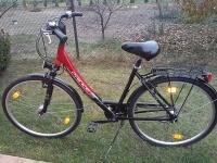 rower PRINCE