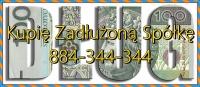 Kupię Zadłużoną Spółkę, JDG, Antywindykacja, pomoc 233/299/5 ...