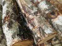 Sprzedam drewno kominkowe debowe.brzozowe.sosnowe