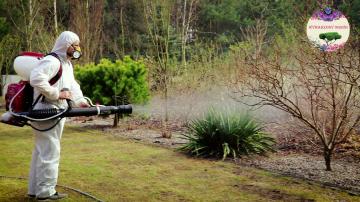 Opryski ogrodów i trawników