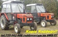 Kupię MTZ 82, MTZ80, Belarus, Pronar, Białoruś, LTZ, Władimi