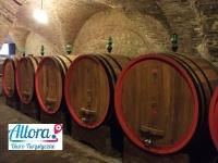 Wycieczka 9 dni Włochy szlakiem wina.